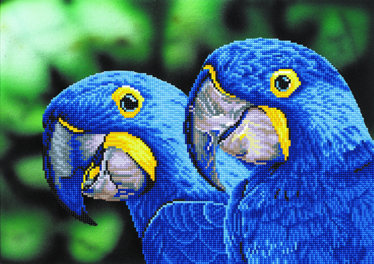 Diamond Dotz Blue Hyacinth Macaws